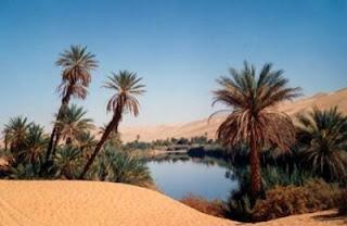 Resultado de imagem para fim do deserto
