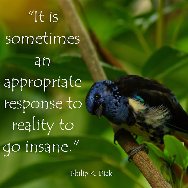 It is sometimes an appropriate response to reality to go insane. - Philip K. Dick