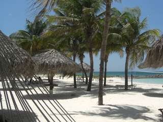 Aruba - Palm/Eagle Beach - Shady Palms and White Sand