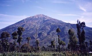 Menikmati Keindahan Gunung Merbabu dengan Pendakian