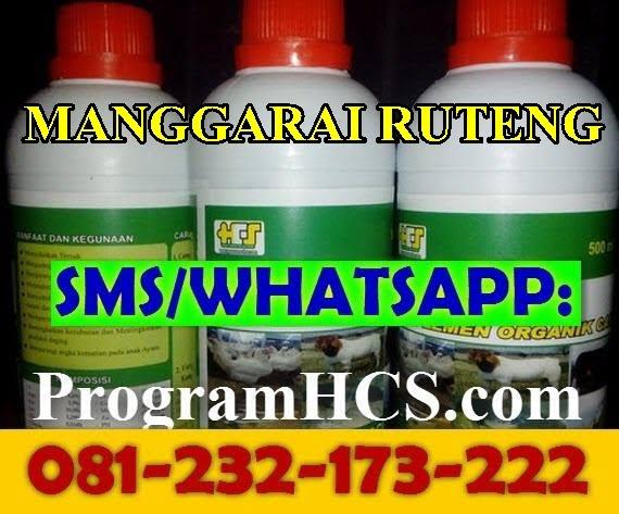 Jual SOC HCS Manggarai Ruteng