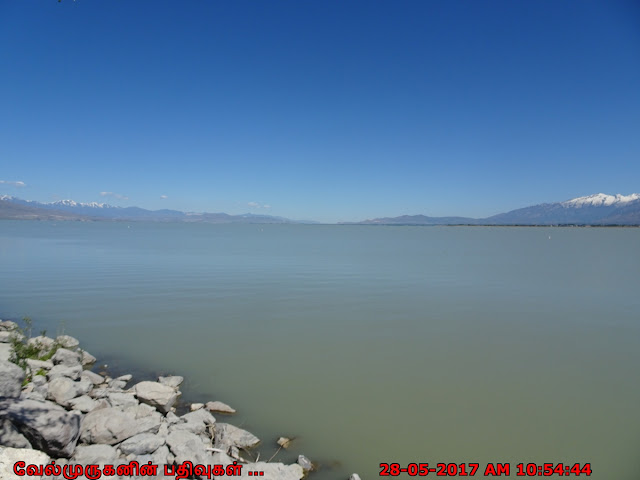 Utah Lake State Park Provo
