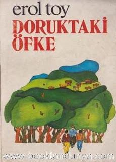 Erol Toy - Doruktaki Öfke