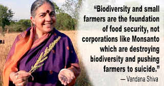 biodiversity and small farmers beat Monsanto