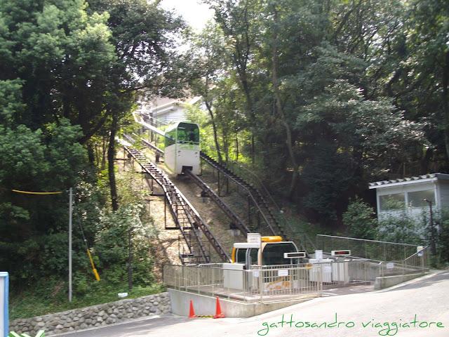 Fukuoka zoo