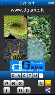 PACCHETTO 2 livello 1 - Soluzioni Trova la Parola - Foto Quiz con Immagini e Parole