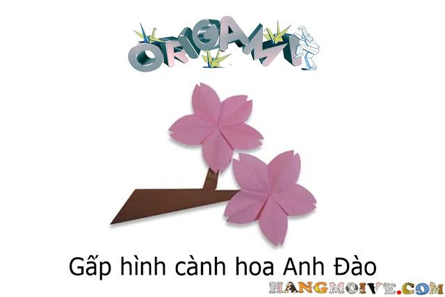 Gấp xếp hình bông hoa anh đào bằng giấy origami