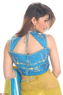 Bollywood Actress in Saree Spicy Pics 09.jpg