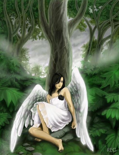 Jika Lelaki Mendapat Bidadari, Maka Wanita Mendapat Apa di Surga? Inilah Jawabannya