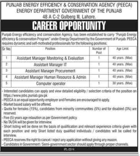 Advertisement for Energy Department Punjab Jobs