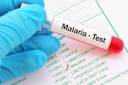 Sakit Malaria Tak Kunjung Sembuh ? Gunakan Ramuan ini supaya sembuh