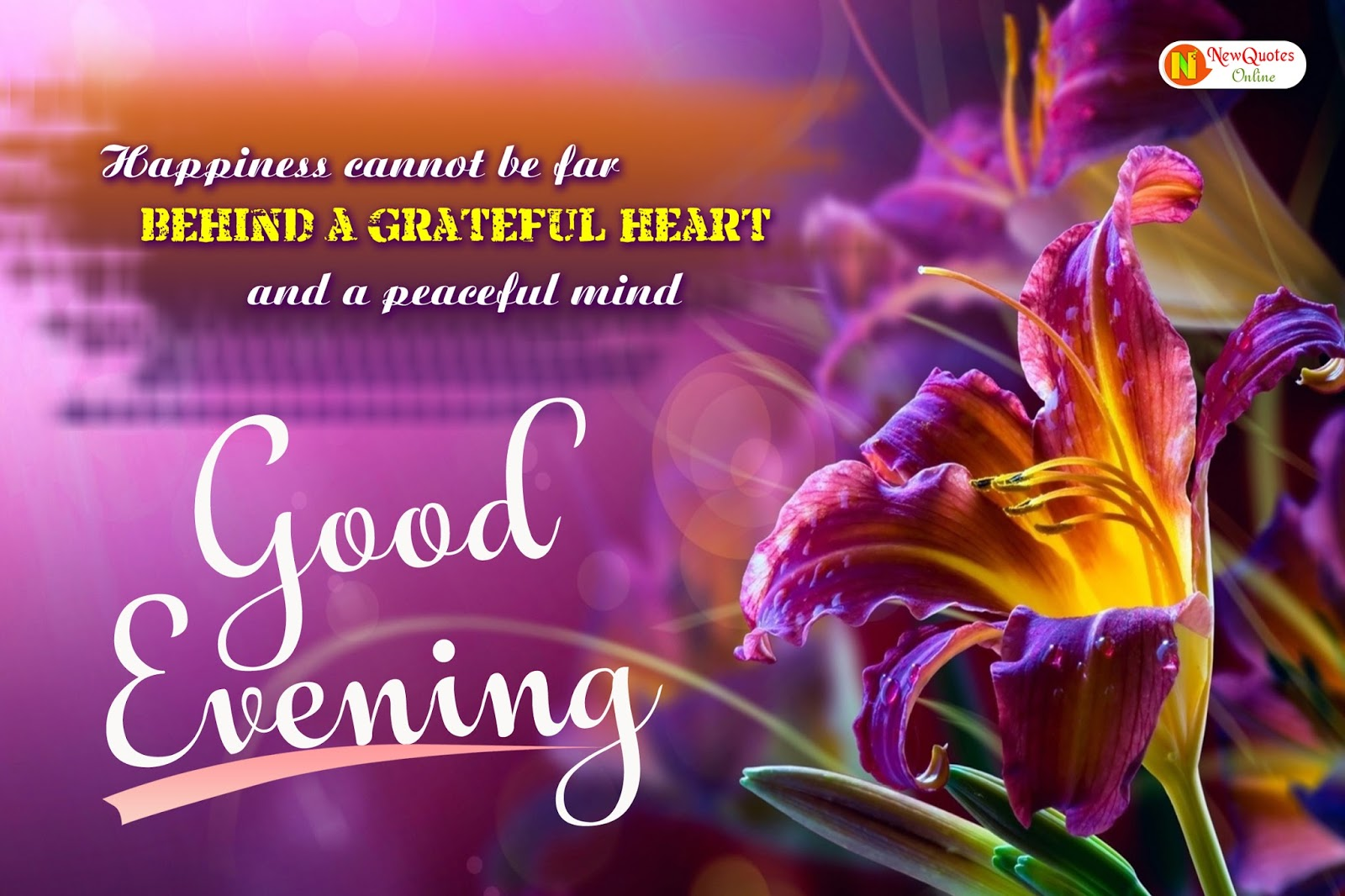 Good Evening Hd Wallpapers Latest Good Evening Messages Wishes