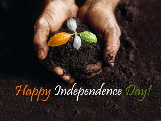 top-india-independence-day-wallpaper