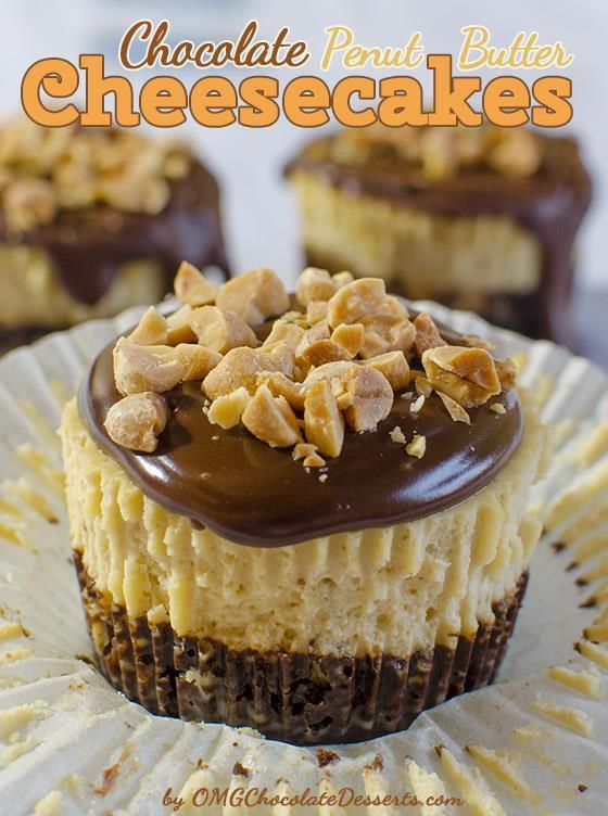 Mini Chocolate Peanut Butter Cheesecakes Recipe