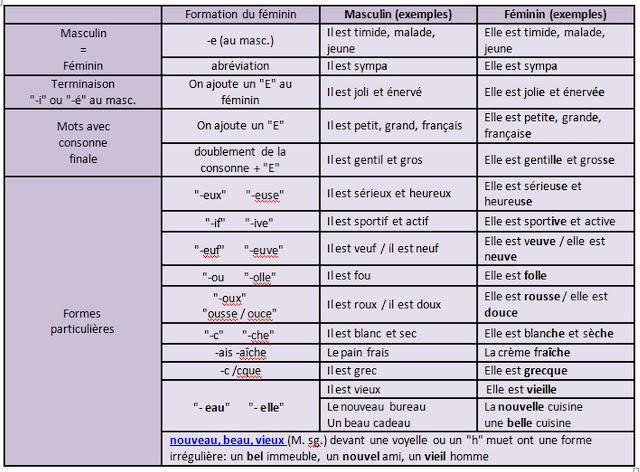 Rodzaj żeński przymiotników - gramatyka 7 tabela - Francuski przy kawie