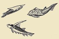 ricerca sull'era primaria o paleozoica