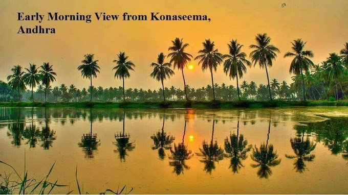 Early Morning View from Konaseema Andhra