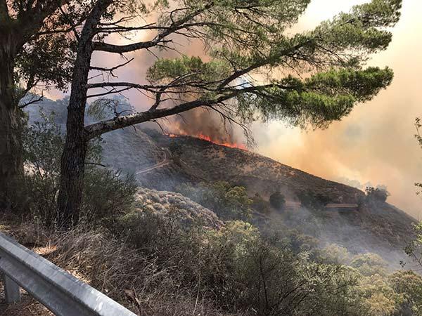 Lo que se sabe del incendio en la Cumbre de Gran Canaria