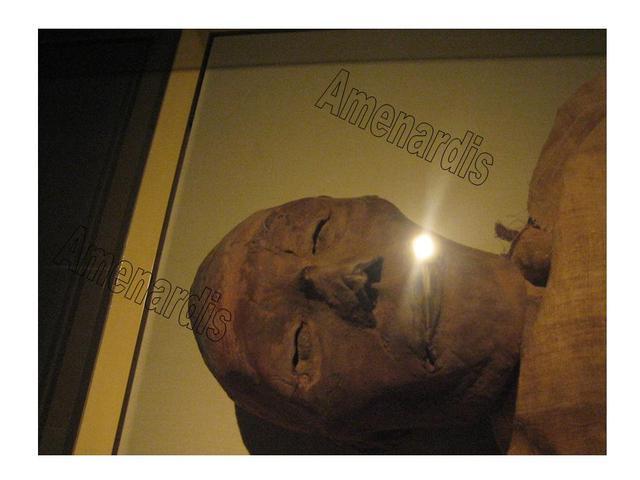 MOMIAS FARAONES, MOMIAS REALES, MOMIAS EGIPTO, Ramses V