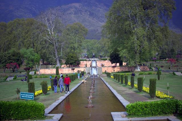 nishat bagh garden srinagar kashmir india