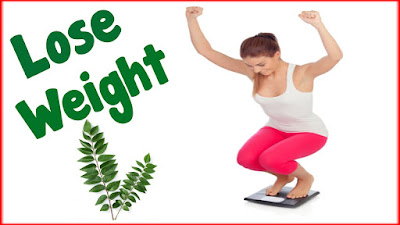 Curry leaves help in weight loss