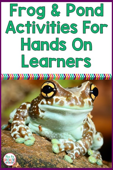 Many of my students don't have a lot of back ground knowledge to draw on in school. These hands on activities help students build a deeper understanding of the science and language concepts.