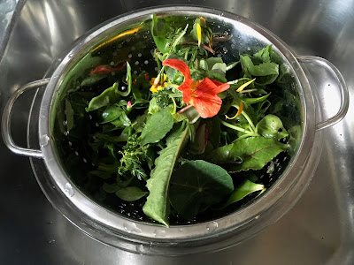 Salat im Sieb