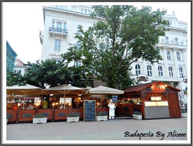 Ungaria-Budapesta-centru-istoric-terasa