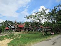 tana toraja sulawesi indonesia