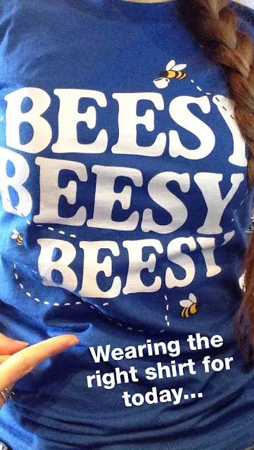 Beesy Beesy Beesy T-Shirt