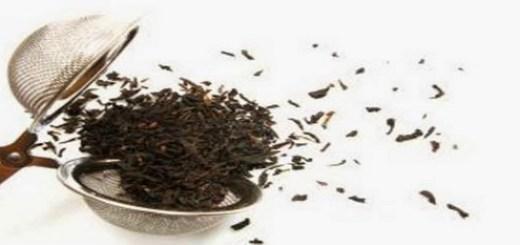 Distributor Tardjo Tea: WA 0821 1089 7961, Teh Untuk Diet ...