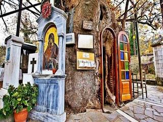 Το ομορφότερο εκκλησάκι της Ελλάδας είναι μέσα σε δέντρο