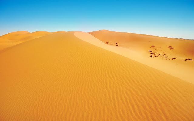 Sea of Sand at Sahara Desert