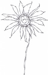 line drawings flower flowers doodle wonky drawing screen thermofax sketches daisy doodles simple floral sketch draw sloan carol field project