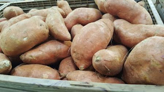 Makanan Diet Untuk Penderita Diabetes yang Aman