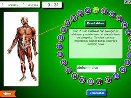 http://cpvaldespartera.educa.aragon.es/pasapalabras/musculos_huesos.swf