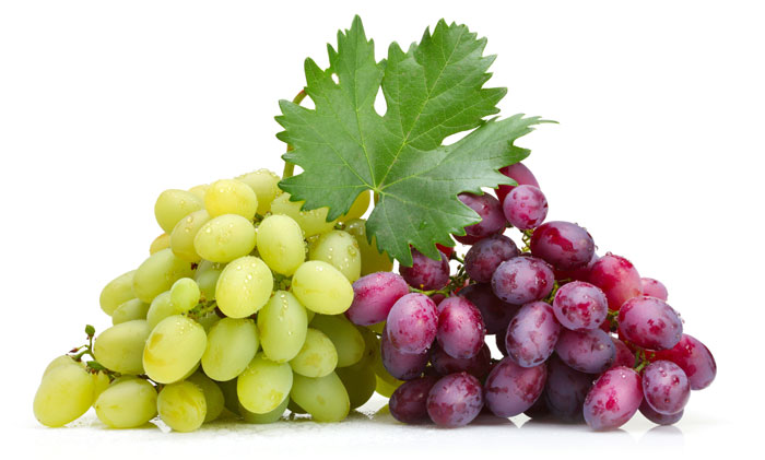Картинки по запросу виноград это фрукт или ягода