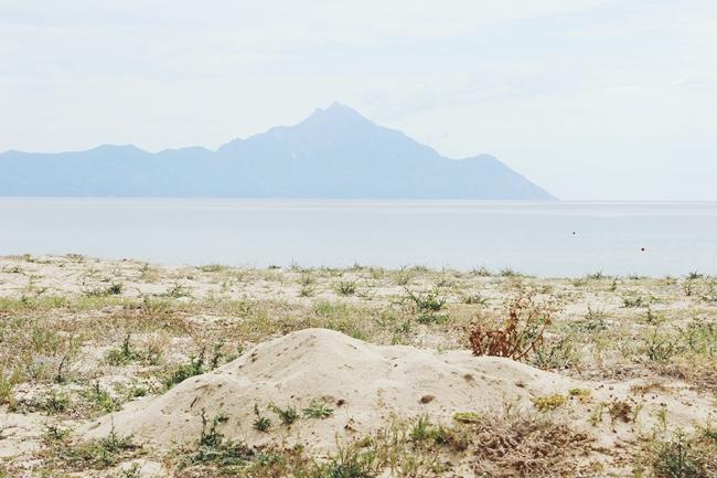 Sarti beach and nature photos