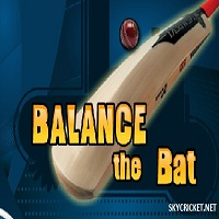 Play Balance Bat Cricket Game