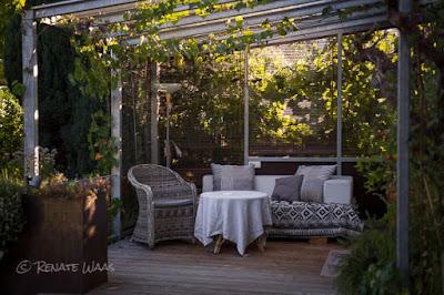 Holzterrasse mit echtem Wein und einem überdachten Sitzplatz