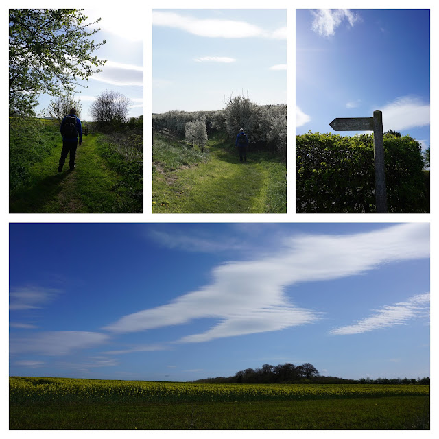 Beautiful countryside walking on day 7 - Carrie Gault 2018