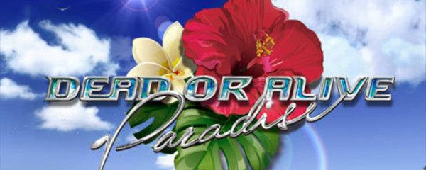 dead or alive paradise psp download