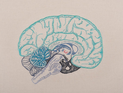 02-The Brain-Juana-Gómez-Embroidered-Anatomy-exposing-Internal-Physiology-www-designstack-co
