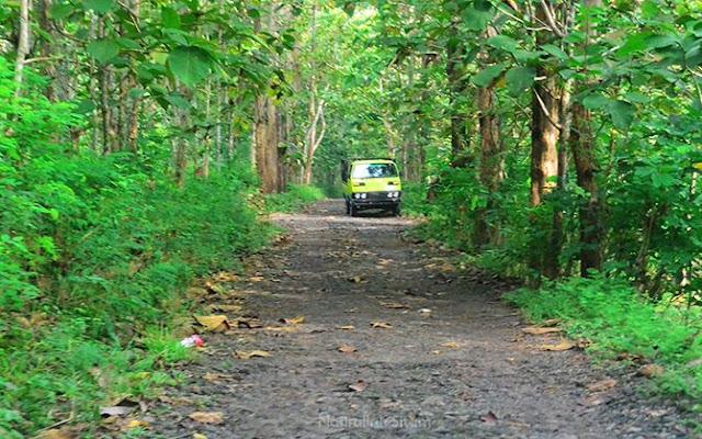 Jalan menuju trek offroad Pindul