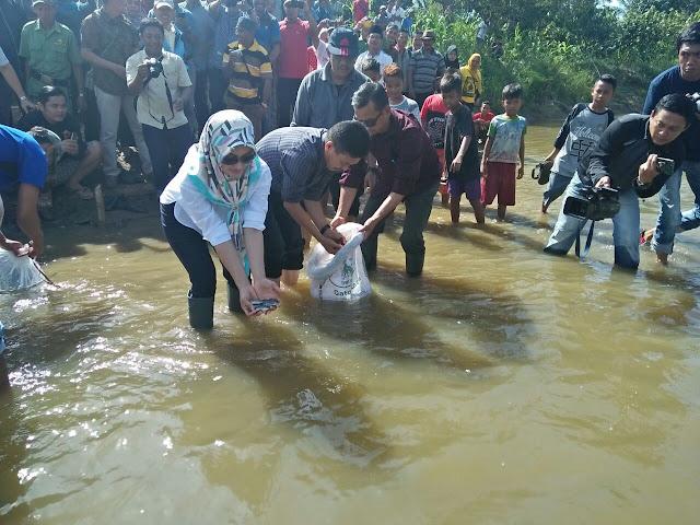 Bupati Lutra Lepas Bibit Ikan Nila di Sungai Walu-walu