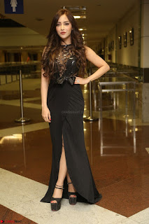 Angela Krislinzki in Transparent Black Gown at Rogue Movie Teaser Launch 1st March 2017 045.JPG
