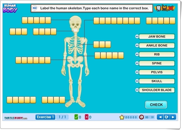 http://www.turtlediary.com/grade-1-games/science-games/human-body.html