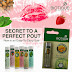 Protect and Moisturize Your Lips this Winter - Biotique Lip Balms