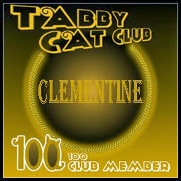 Tabby Cat Club 100 Members