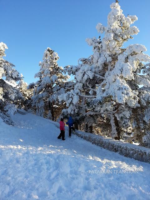 Mirador de Los Robledales. Valle de Lozoya